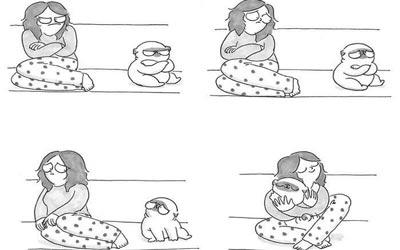 cane arrabbiato sul divano