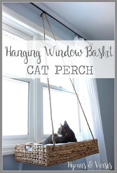 cesta per gatti fai da te