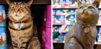 monumento al gatto: statua a forma di gatto