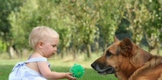 La ricerca della felicità animale