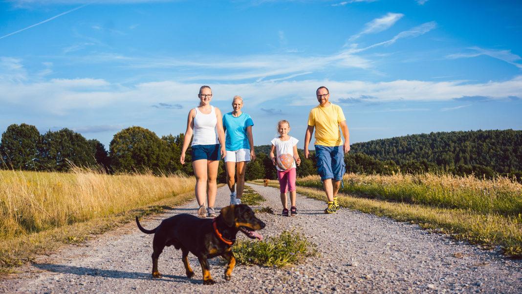 6 consigli per camminare con il tuo can